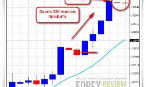 Academyfx.ru: отзывы об академии форекс от реальных учеников