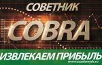 Советник cobra – адреналиновый трейдинг с максимальной точностью